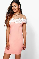Boohoo Lace Off Shoulder Detail Bodycon Dress Blush
