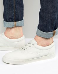 Asos Lace Up Sneakers In Stone Canvas With Rubber Toe Detail Stone