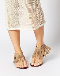 New Look Hippie Tan Fringed Flat Sandals