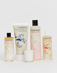 Cowshed Mother And Baby Massage Set Clear
