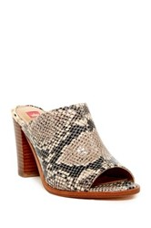 Elaine Turner Designs Rori Open Toe Mule Multi