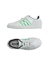 Msgm Footwear Low Tops And Trainers Men White