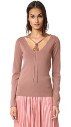 Nina Ricci Long Sleeve Knit Pullover Dark Powder