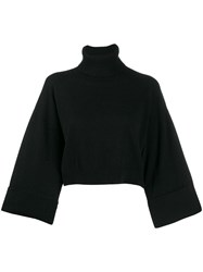 P.A.R.O.S.H. Knit Cropped Roll Neck Jumper Black