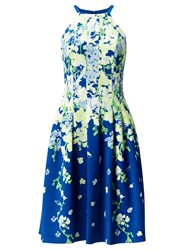 Adrianna Papell Floral Garden Party Dress Blue