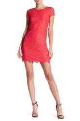 Laundry By Shelli Segal Short Sleeve Lace Shift Dress Pink