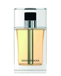 Christian Dior Dior Homme