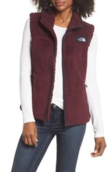 The North Face Campshire Vest Fig