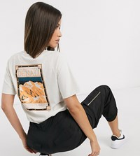 The North Face Faces T Shirt In Cream Exclusive At Asos