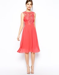Warehouse Lace Detail Prom Dress Pink