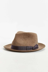 Bailey Of Hollywood Bertram Fedora Hat Brown