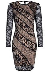 True Decadence Sheer Lace Bodycon Dress Black