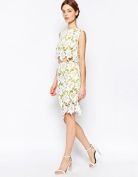 Harlyn Pencil Skirt Chartreuse Cream