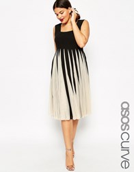 Asos Curve Fit And Flare Mesh Dress With Square Neck Black White Multi