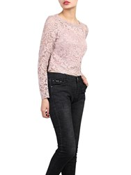 Jolie Moi Scalloped Lace Top Pink