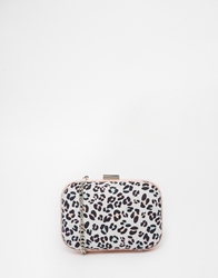 Miss Kg Hanna Leopard Print Oval Boxed Clutch Multi