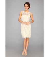 Adrianna Papell Illusion Neck Lace Dress Champagne Women's Dress Gold