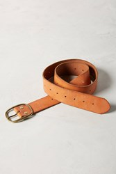 Anthropologie Primary Leather Belt Brown