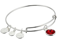 Alex And Ani July Birthstone Charm Bangle Rafaelian Silver Finish Bracelet