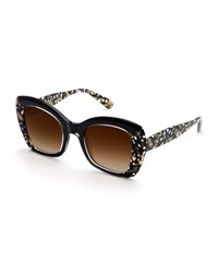 Krewe Felicity Acetate Two Tone Butterfly Sunglasses Black