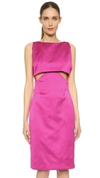 Zac Posen Sleeveless Dress Raspberry