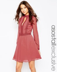 Asos Tall Skater Dress With Lace Inserts Brown