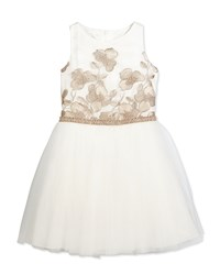 David Charles Sleeveless Embroidered Tulle Special Occasion Dress Ivory Beige