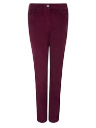 Dash Velveteen Trouser Regular Peony Red