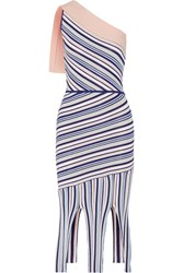 Tabula Rasa Ibis One Shoulder Fringed Striped Stretch Knit Dress Blush