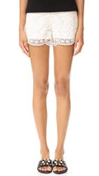 Cupcakes And Cashmere Estelle Scalloped Edge Lace Shorts Ivory