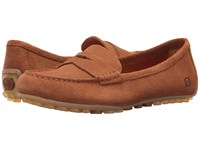 Born Malena Brown Suede Women's Flat Shoes