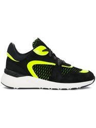 Casadei Panther Fluo Sneakers Black