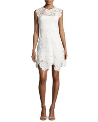 Catherine Deane Cap Sleeve Lace Fit And Flare Dress Ivory