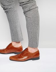 Red Tape Toe Cap Oxford Shoes In Tan Leather Tan