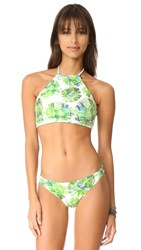 Shoshanna High Neck Halter Bikini Top Banana Leaf