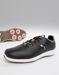 Puma Golf Power Adapt Leather Shoes In Black