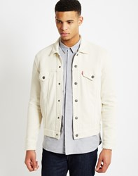 Levi's French Terry Trucker Jacket White