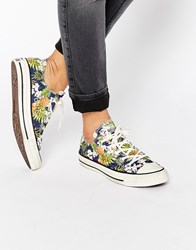Converse All Star Chuck Taylor Tropical Print Ox Plimsoll Trainers Inked Multi