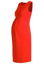 Isabella Oliver Coraline Jersey Dress Cherry Red