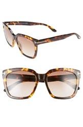 Tom Ford Women's Amarra 55Mm Gradient Lens Square Sunglasses Havana Gradient Brown Havana Gradient Brown