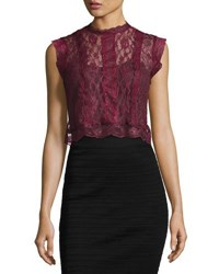 Romeo And Juliet Couture Sheer Lace Paneled Crop Top Burgundy