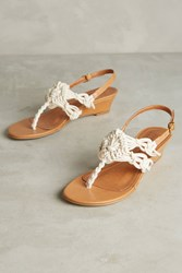 Anthropologie Newport Slingback Thongs White