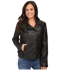 Scully Lissa Chic Moto Jacket Black Women's Coat