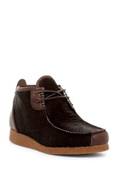 Australia Luxe Collective Lucan Genuine Sheepskin Lined Lace Up Shoe Brown
