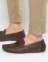 Lacoste Concours Tassle Loafers Brown