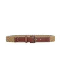 Gold Case Belts Brown