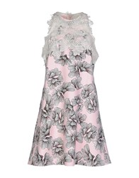 Giamba Dresses Short Dresses Women Light Pink
