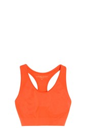 Lucas Hugh Technical Sports Bra Orange