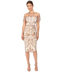 Marchesa Short Sleeve Metallic Embroidered Tulle Dress Ivory