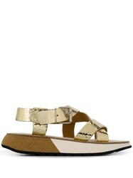 Flamingos Candy Sandals Gold